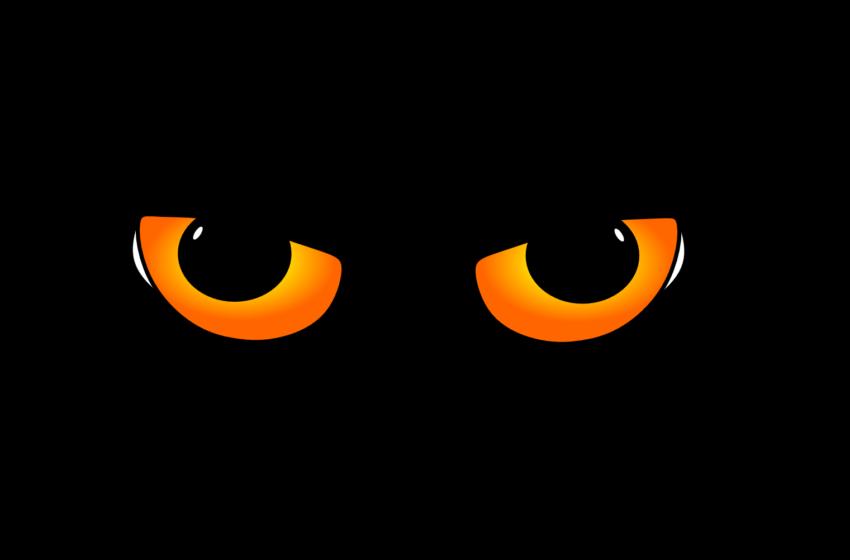 Quanti occhi?👀