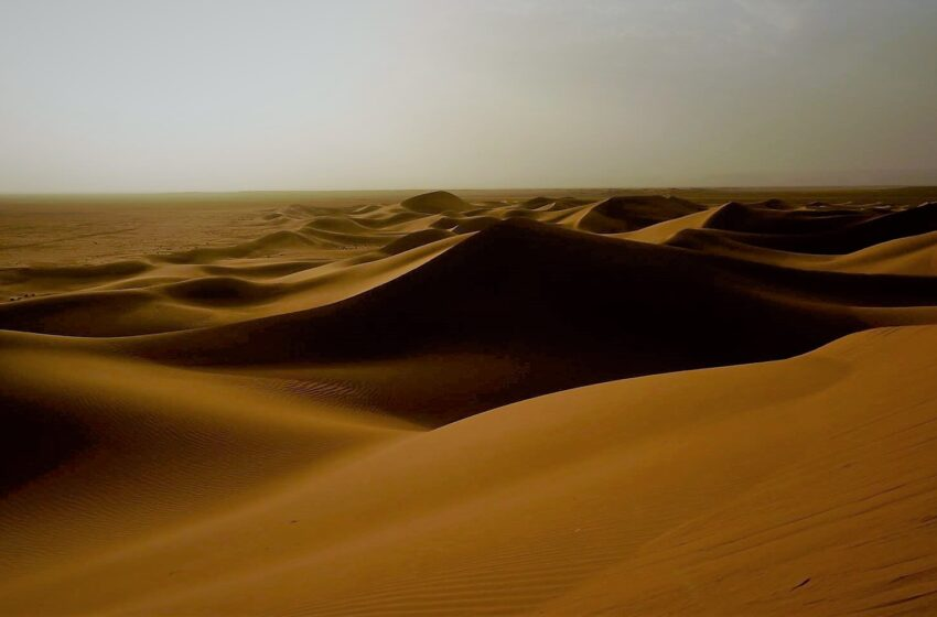 Duna di sabbia del Sahara
