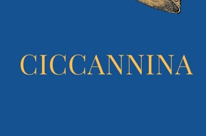 Ciccannina e la nuova indagine del commissario da 15 mila copie
